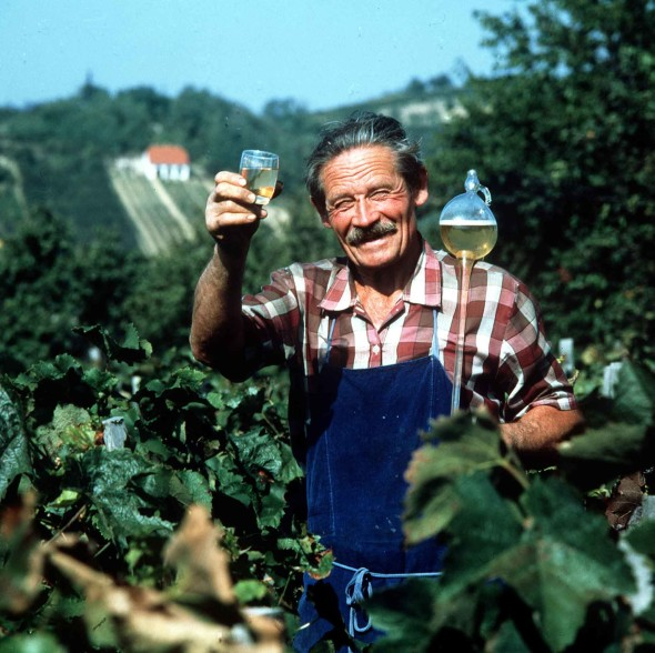 Steal Wine from a Hungarian and You are Gonna Get Poisoned – One of the Laws of Nature