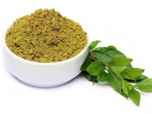 Leaves of Lawsonia inermis with Powdered Lawsone (Henna)