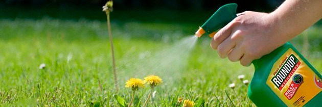 Home Use of Roundup